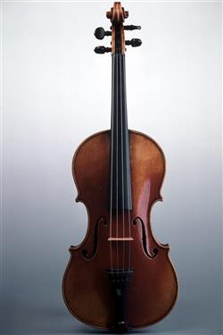 Violon   Paul Kaul