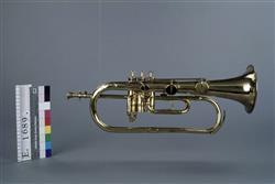 Saxhorn contralto en si bémol à pistons et à clés   Adolphe Sax