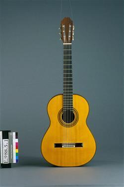 Guitare acoustique | Robert Bouchet