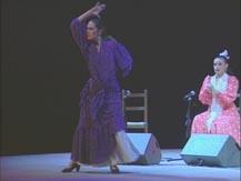 Flamenco à la cité. Lauréats du concours de flamenco de Nîmes   Natalia del Palacio