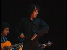 L'Andalousie, musiques traditionnelles, musiques gitanes. Flamenco soy |  Manolete