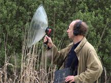 La composition ornithologique, Bernard Fort  