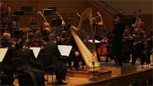 Concierto de Aranjuez (version pour harpe) | Joaquin Rodrigo