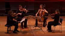 Biennale de quatuors à cordes. Quatuor Tetzlaff | Wolfgang Amadeus Mozart
