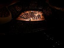 La Chauve-souris | Johann Strauss
