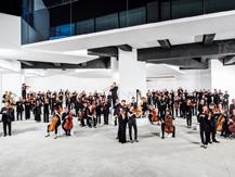 Musiciens de l'Orchestre de Paris : Richard Wagner - Richard Strauss | Richard Strauss